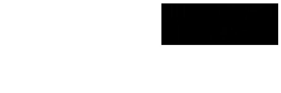 Fender J Mascis Telecaster Maple Fingerboard Bo