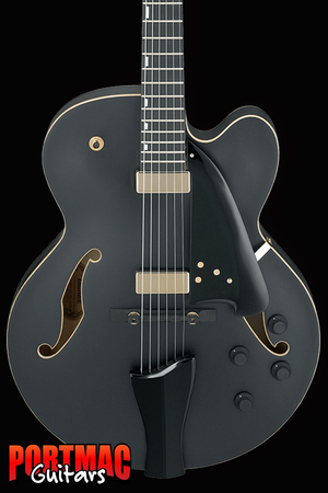 Ibanez AFC125 Black Flat Contemporary Archtop