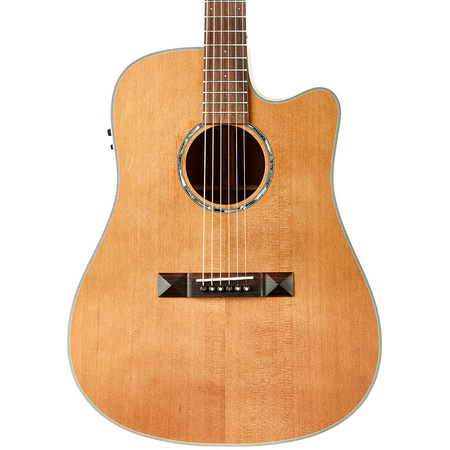 Tasman TA100-CE Dreadnought Cutaway Acoustic Electric with Hard Case