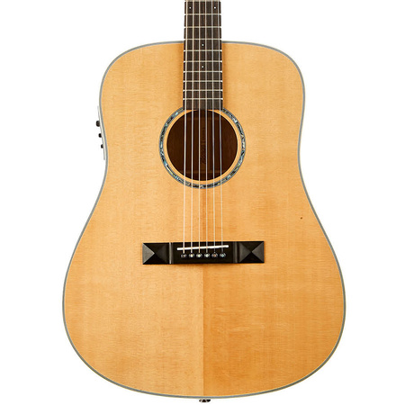 Tasman TA300-E Dreadnought Acoustic Electric with Hard Case