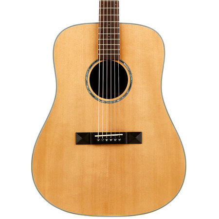 Tasman TA200-E Dreadnought Cutaway Acoustic Electric with Hard Case