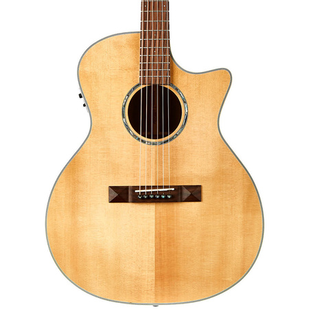 Tasman TA200GS-CE Grand Symphony Acoustic Electric with Hard Case